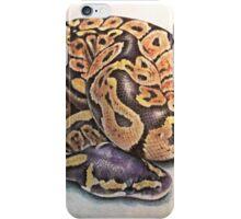 Ball Python iPhone Case/Skin