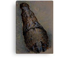 crocodile in kakadu Canvas Print