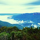 Misty Jamison Valley, Blue Mountains National Park, NSW by GeorgeOne