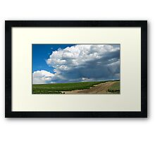 Tetonia Idaho - Blooming Potatoes Framed Print