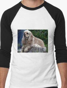 Cocker Spaniel Blonde Portrait   Men's Baseball ¾ T-Shirt