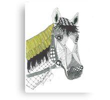 Zen Horse Canvas Print