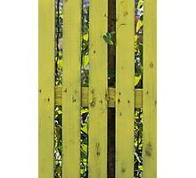 yellow fence in the house Photographic Print