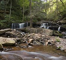 Big Summertime View Of Delaware Falls by Gene Walls