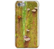 Moss Covered Trees iPhone Case/Skin