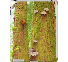 Moss Covered Trees iPad Case/Skin