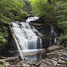 All Of Mohican Falls In June by Gene Walls