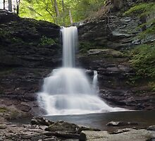 Sheldon Reynolds Falls On The Longest Day Of The Year by Gene Walls