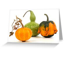 Three decorative pumpkins - green, yellow and orange on a white background Greeting Card