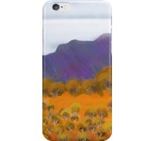 IPad Art - Across the Sand hills iPhone Case/Skin