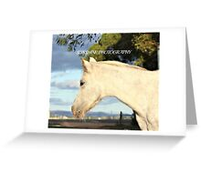 beauty & nature Greeting Card