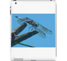 Dragonfly on Clothes Pin iPad Case/Skin