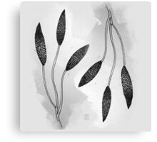 Flower I (B&W) Canvas Print