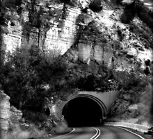 The Tunnel by Sheryl Gerhard