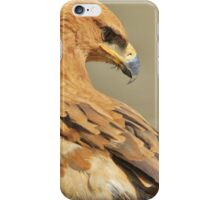 Tawny Eagle - Majestic - African Wild Bird Background iPhone Case/Skin