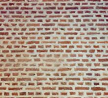Wall by Paul Finnegan