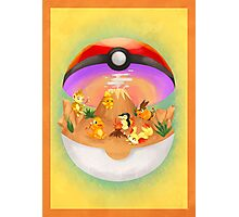 Pokemon: Fire Starters Home Photographic Print