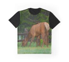 Colorado Elk Graphic T-Shirt