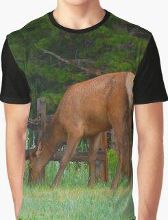 Colorado Elk Graphic T-Shirt