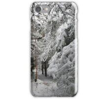 A Walk In The Snowy Forest iPhone Case/Skin