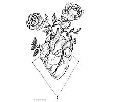 Heart - Roses Photographic Print