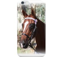 equine chestnut beauty iPhone Case/Skin