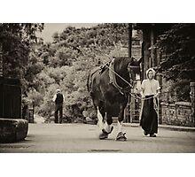 Shire Walk  Photographic Print