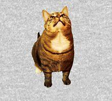 Juno is my Cat. Hoodie