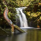 Berowra Creek by vilaro Images