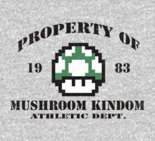 Mushroom Kingdom 1UP by ExplodingZombie