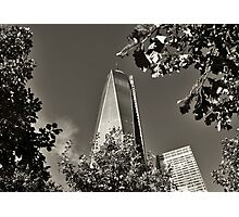 Out of the Ashes of 9/11 Photographic Print