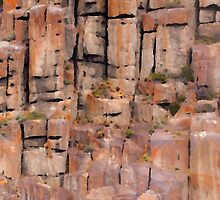 Cliff face by Morag Anderson