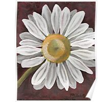 Summer Daisy Painting Poster