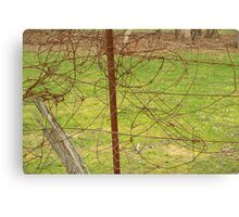 Tangled wire Canvas Print