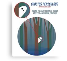 Dangerous Ghost and Where to Find It Canvas Print