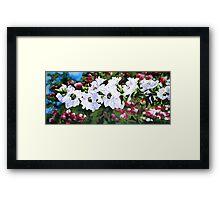 """""""The White tea Tree""""  Framed Print"""