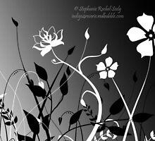 Opposites Exist In Harmony by Stephanie Rachel Seely