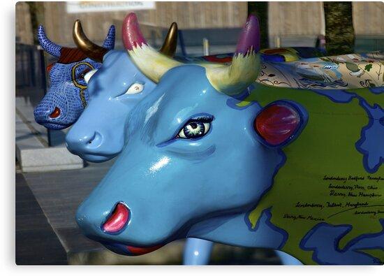 Three Cows on Parade, Ebrington Sq, Derry by George Row