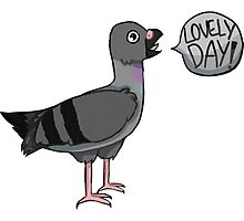 Lovely Day! - Pigeon Photographic Print