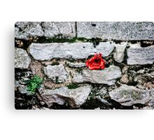Tower of London Poppy artists exhibition... Canvas Print