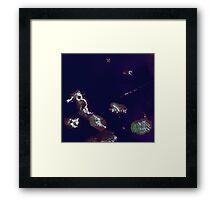 Galapagos Islands Ecuador Satellite Image Framed Print