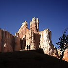 Bryce Canyon National Park- Wall Street by Alex Preiss