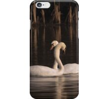 Courtship Painting iPhone Case/Skin