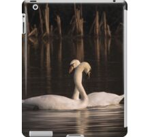 Courtship Painting iPad Case/Skin