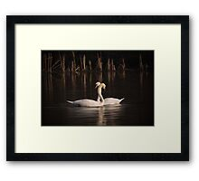 Courtship Painting Framed Print