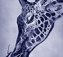 Fractal Giraffe Duotone by John Edwards