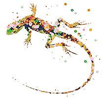 Rainbow Lizard  Photographic Print
