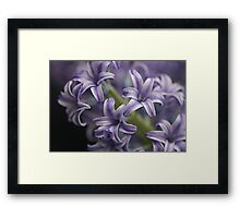 Beauty in Blue Framed Print