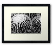 Cactus Spines in Black and White Framed Print