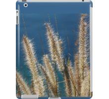 Hawaiian Coastline iPad Case/Skin